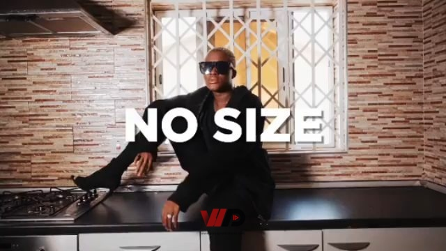 Photo of Fella Makafui – No Size (Official Video)