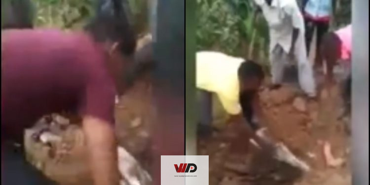 Photo of VIDEO: Dead Pregnant Woman Gives Birth In Grave