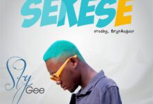 Photo of Sky Gee – Sekese (Prod by Bryt August & King2)